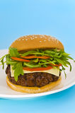 Hamburger with cheese and mixed tomato and salad Royalty Free Stock Photo