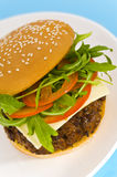 Hamburger with cheese and mixed tomato and salad Stock Photos
