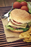 Hamburger with cheese, tomato, onion and lettuce Royalty Free Stock Photography