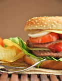 Hamburger with cheese, tomato, onion and lettuce Royalty Free Stock Images