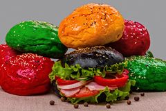 Hamburger with colored rolls closeup stock images