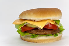 Hamburger com alface, queijo Cheddar, tomate Fotos de Stock