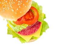 Hamburger com carne em um prato de petri que representa in vitro a carne Foto de Stock Royalty Free