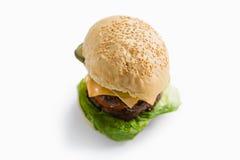 Hamburger com queijo e vegetais Imagens de Stock Royalty Free