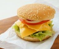 Hamburger con formaggio ed i pomodori immagini stock libere da diritti