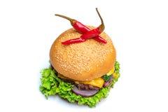Hamburger con il peppe del peperoncino rosso fotografia stock libera da diritti