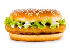 Hamburger con il pollo fotografia stock libera da diritti
