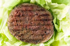 Hamburger con insalata bio- immagini stock