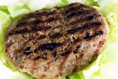 Hamburger con insalata bio- fotografia stock