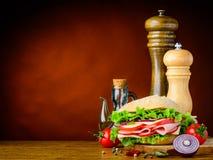 Hamburger con la cipolla, pomodoro e spezie e spazio della copia Fotografia Stock