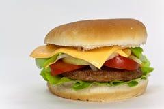 Hamburger con lattuga, formaggio cheddar, pomodoro Fotografie Stock
