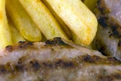 Hamburger con le fritture fotografia stock libera da diritti