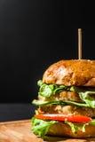 Hamburger con le fritture Immagini Stock Libere da Diritti