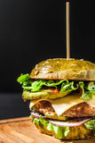 Hamburger con le fritture Fotografie Stock