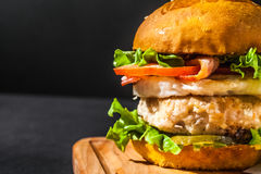 Hamburger con le fritture Immagine Stock Libera da Diritti