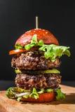 Hamburger con le fritture Fotografia Stock