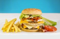 Hamburger con le fritture dal lato fotografia stock
