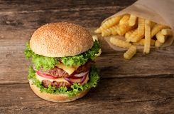 Hamburger con le patate fritte immagine stock
