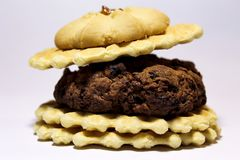 Hamburger of cookies, with a cherry on top royalty free stock image