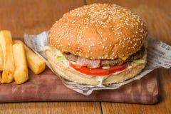 Hamburger délicieux sur le papier et les fritures Photos libres de droits