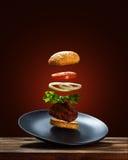 Hamburger d'ingrédients de vol Images stock