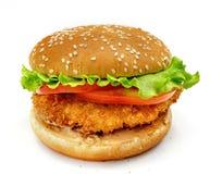 Hamburger d'isolement Images stock
