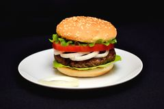 Hamburger da vitela com salada Fotos de Stock Royalty Free