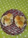 Hamburger dans notre maison Photos libres de droits