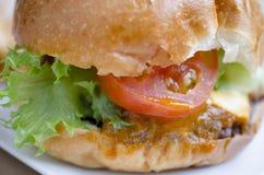 Hamburger de boeuf, aliments de préparation rapide Images stock