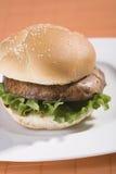 Hamburger de champignon de couche Photos libres de droits