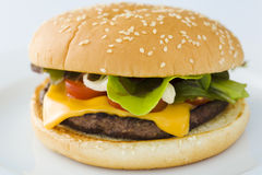 Hamburger de fromage photo stock