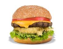 Hamburger de fromage Photos stock