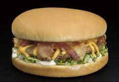 Hamburger de fromage de lard Image libre de droits