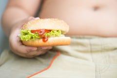 Hamburger de fromage de poulet sur la grosse main obèse de garçon Photographie stock libre de droits