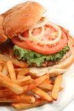 Hamburger de la Turquie Photographie stock