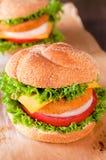 Hamburger de poissons Photographie stock libre de droits