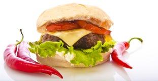 Hamburger de /poivron photo stock