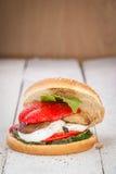 Hamburger de Vegan Photos stock
