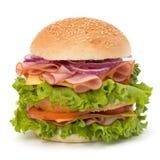 Hamburger degli alimenti industriali Fotografia Stock