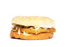 Hamburger del pollo Fotografie Stock Libere da Diritti