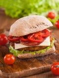 Hamburger del pollo Immagine Stock Libera da Diritti