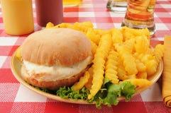 Hamburger del pollo con le fritture e la birra fotografie stock