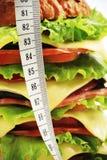 Hamburger del pranzo Fotografia Stock Libera da Diritti
