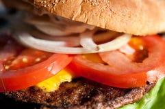 Hamburger del primo piano immagini stock libere da diritti