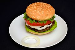 Hamburger del vitello con insalata Fotografia Stock