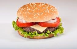 Hamburger delizioso Fotografia Stock Libera da Diritti