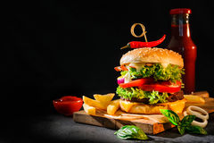 Hamburger delizioso con le patate fritte Immagini Stock