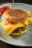Hamburger delizioso del formaggio Immagini Stock