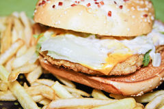 Hamburger della carne Fotografia Stock Libera da Diritti