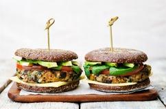 Hamburger della segale dei ceci degli spinaci della melanzana della quinoa del vegano Immagini Stock